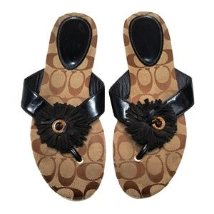 Coach Suki Thong Sandals Brown 8